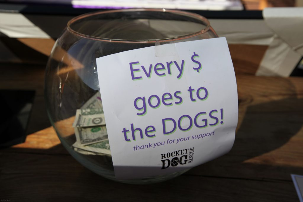 Every $ goes to the dogs