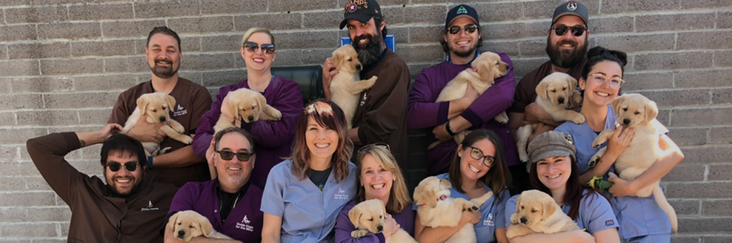 Guide Dogs for the Blind volunteer outing