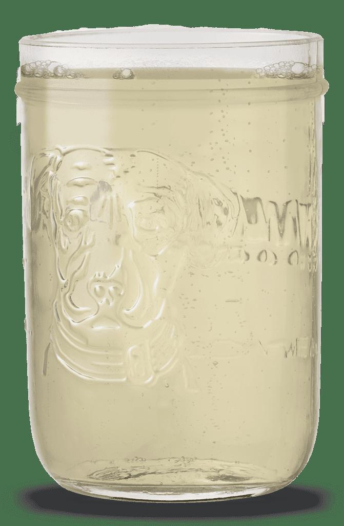 Hoppy Refresher Mason Jar
